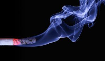 Fumo passivo sugli animali: è dannoso, ecco cosa è emerso