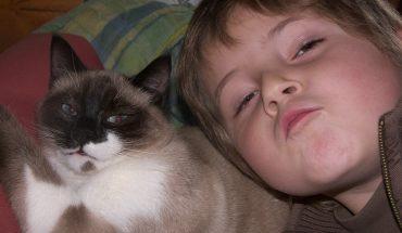 Incontro su animali e bambini: è importante insegnare rispetto