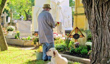 Cimiteri per animali: sempre più folti e numerosi in Italia
